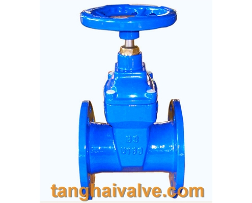 13 gate-valve-5