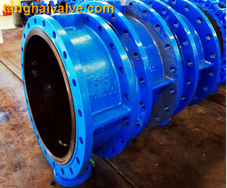 Double flange butterfly valve (1)