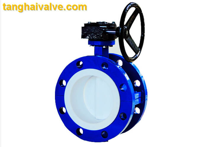 Double flange butterfly valve (10)