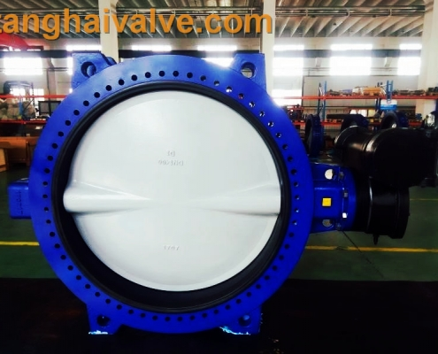 Double flange butterfly valve (14)
