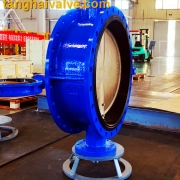 Double flange butterfly valve (2)