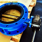 Double flange butterfly valve (3)