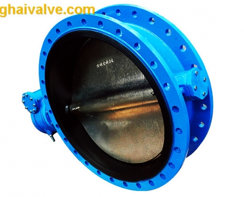 Double flange butterfly valve (4)