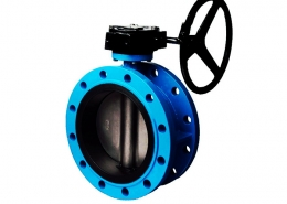 Double flange butterfly valve (7)