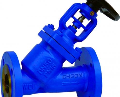 Globe valve (1)