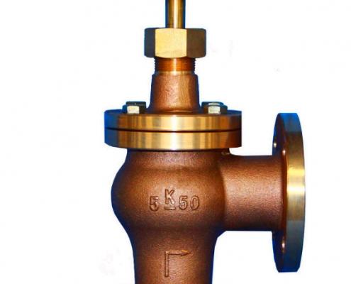 Globe valve (2)
