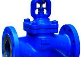 Globe valve (3)