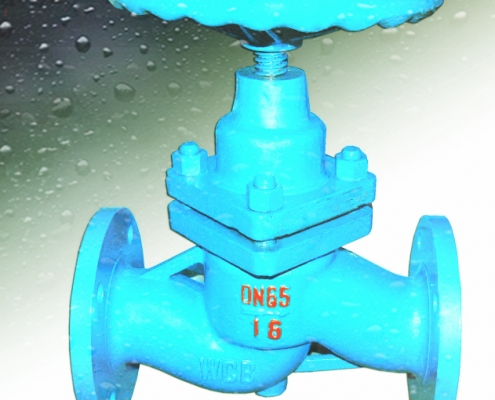 Globe valve (6)