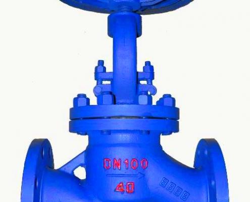 Globe valve (7)