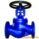 Globe valve (9)