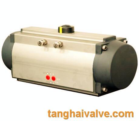 Pneumatic actuator (2)
