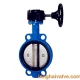 Wafer type butterfly valve with worm gear