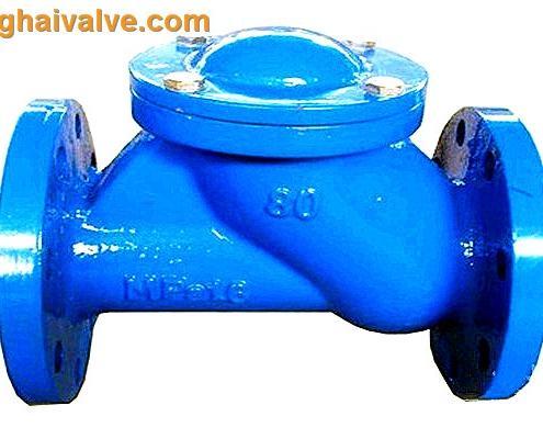 ball check valve (1)