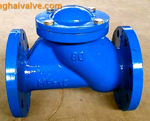 ball check valve (4)