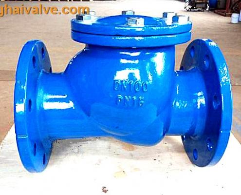 ball check valve (5)