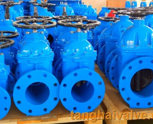 gate valve (1)