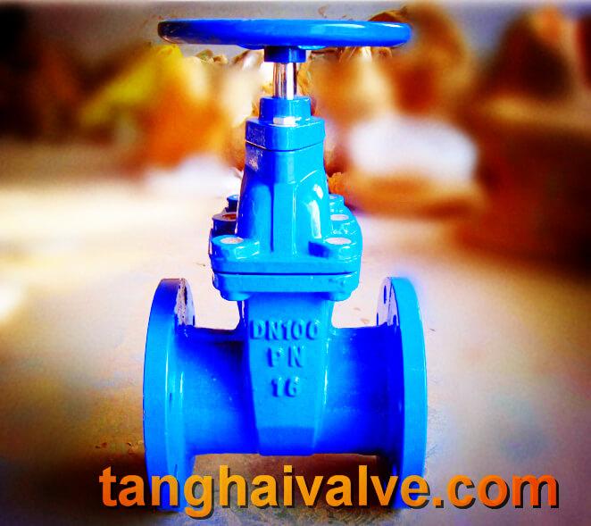 gate valve (3)