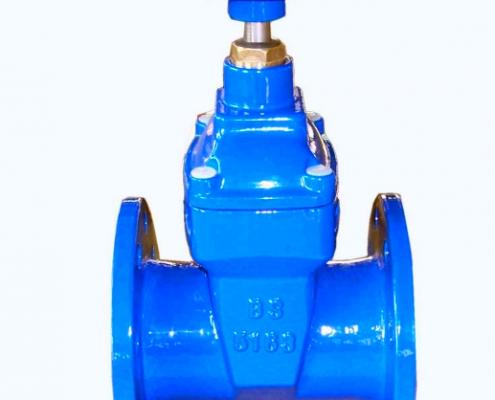 gate valve (5)