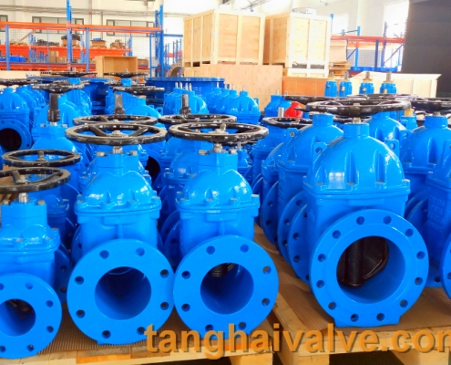 gate valve body