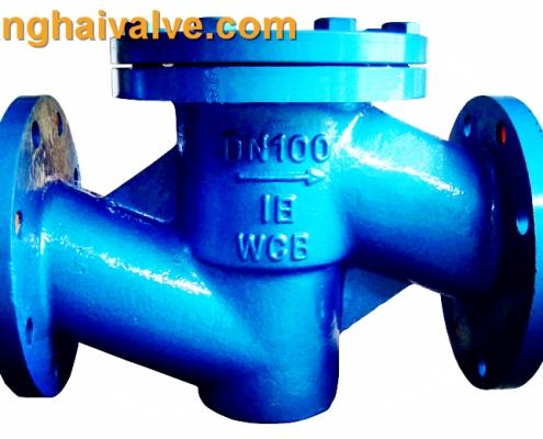 lift swing check valve (2)