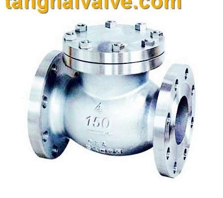 lifting check valve (1)