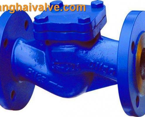 lifting check valve (2)