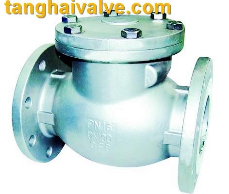 lifting check valve (3)