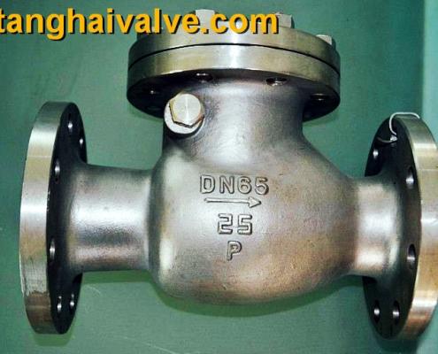 lifting check valve (4)