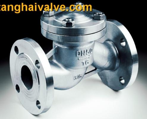 lifting check valve (5)