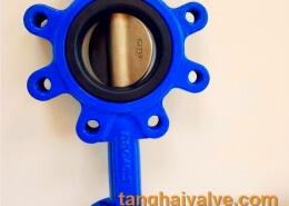 lug type buttefly valve
