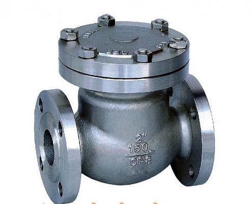 tilting disc check valve body