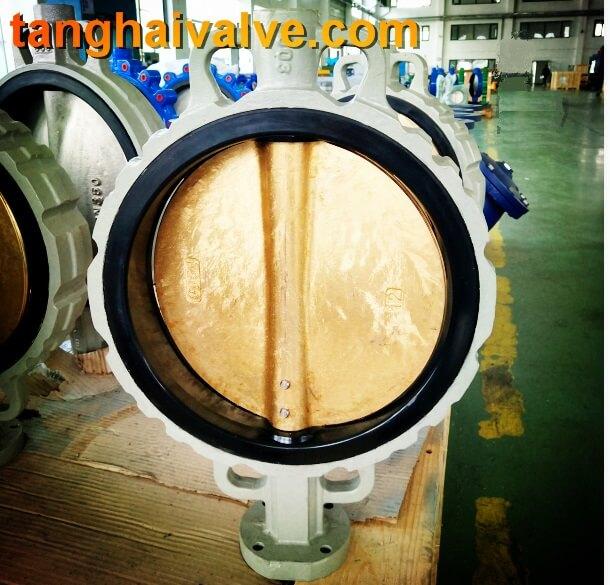 wafer type butterfly valve (6)