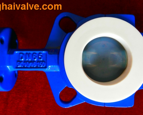 wafer type double stems butterfly valve (1)