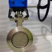 Double eccentric-wafer butterfly valve-D372F-150lbP-stainless steel (1)