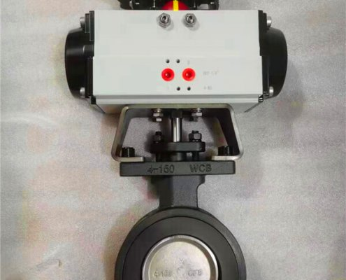 Double offset-butterfly valve-D972F-150lbC (1)