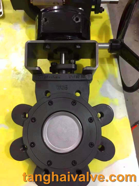 Double offset-lug butterfly valve-D372F-150lbC (1)
