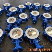 Fluorine lined butterfly valve-PTFE-WAFER (4)