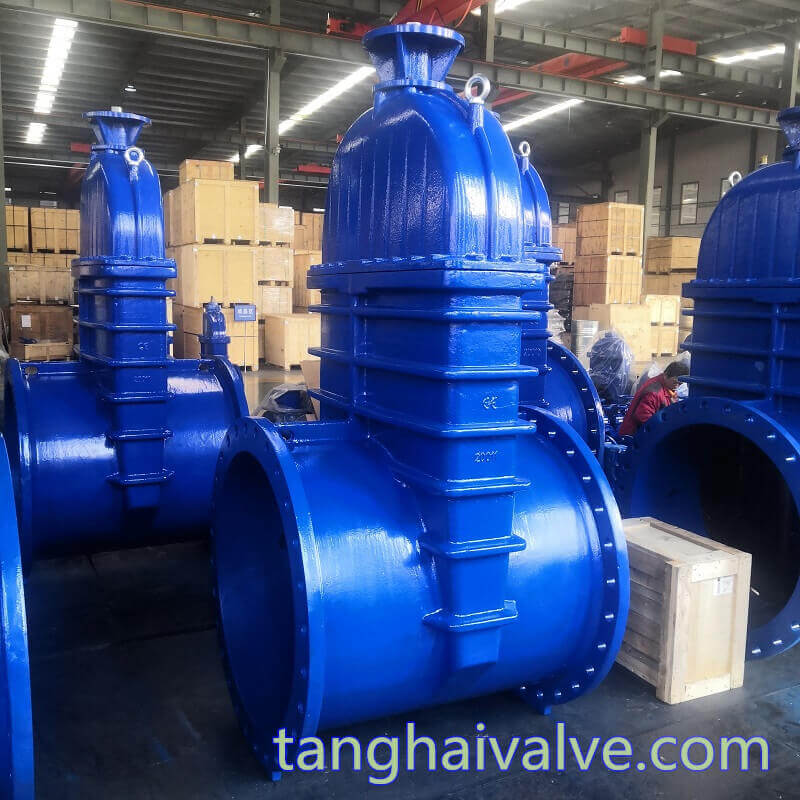 DN1000-DIN-F5-NRS gate valve-IS&Y (6)