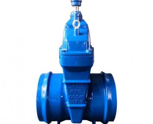 Socket welding gate valve-DN150-PN16-square hat (1)