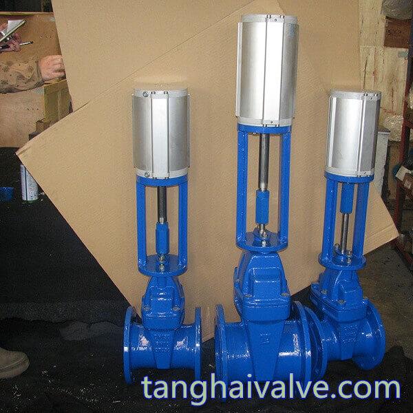 pneumatic gate valve (3)