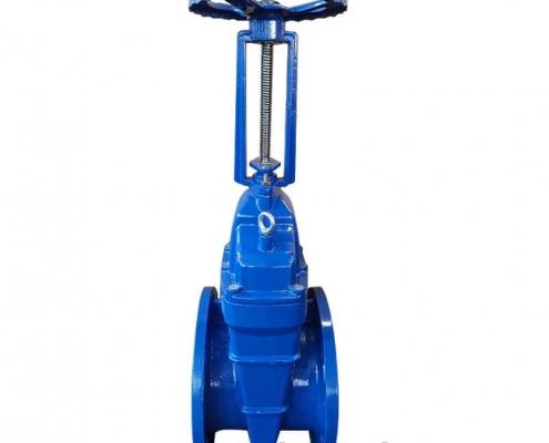 rising stem gate valve-RS-BB OS&Y (3)