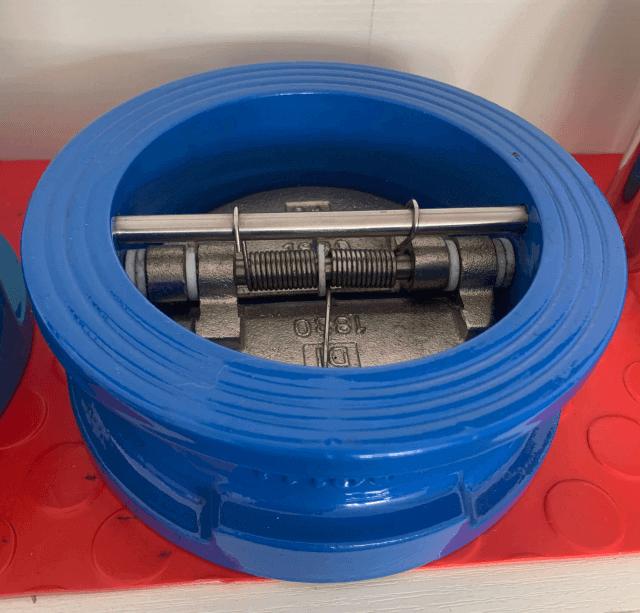 dual plates check valve photos-normal sealing (1)